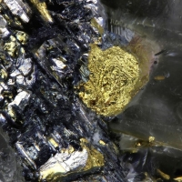 Clausthalite & Native Gold