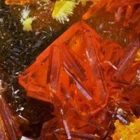 Fourmarierite Vandendriesscheite Becquerelite & Uranophane