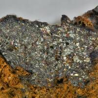 Bornhardtite & Trogtalite In Clausthalite