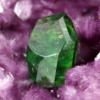 Titanite & Clinochlore