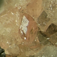 Manganoeudialyte Nepheline & Arfvedsonite