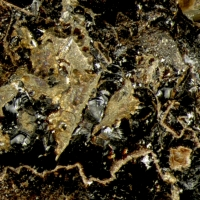 Neotocite Natrolite & Pyrite