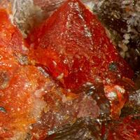 Zincite Leucophoenicite & Pyrochroite