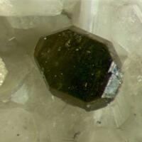Columbite-(Fe) & Muscovite