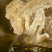 Fluorapatite On Siderite Psm With Albite & Aegirine