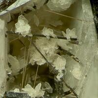 Catapleiite With Pyrochlore Group & Epistolite