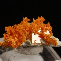 Wulfenite With Mimetite On Chrysocolla