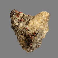 Garnet Quartz Biotite Gneiss