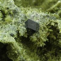 Clinozoisite & Grossular