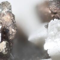 Nickeline & Pyrrhotite