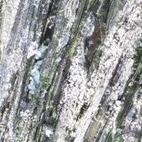 Millerite Jamborite & Retgersite