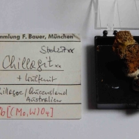 Chillagite Stolzite & Wulfenite