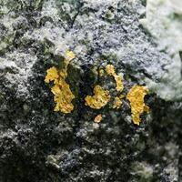 Eckel Minerals: 06 May - 13 May 2021