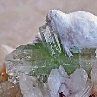 Scolecite Apophyllite & Stilbite