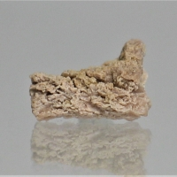 Lanthanite-(Nd)