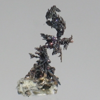 Canfieldite On Silver