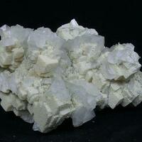 Conchalcite Dolomite & Calcite