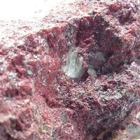 Trencapedres Minerals: 11 Dec - 18 Dec 2019