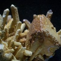 Galena Quartz Calcite & Limonite