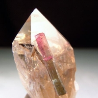 Liddicoatite With Citrine