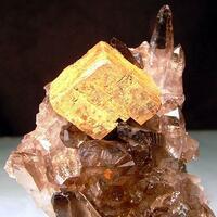 Smoky Quartz & Limonite Psm Siderite