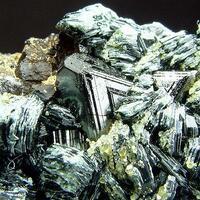 Magnetite & Clinochlore