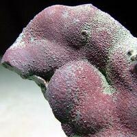 Cuprite On Blister Copper