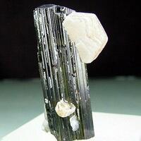 Elbaite With Microlite & Muscovite