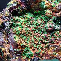 Olivenite Conichalcite & Cuprian Adamite