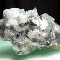 TVM Greenlaws Fluorite
