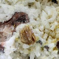 Synchisite-(Ce) & Albite