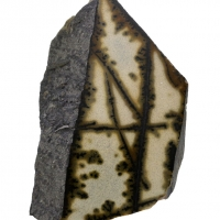 Porcellanite With Melnikovite