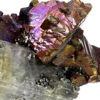 Apatite & Chalcopyrite