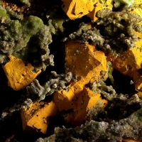 Limonite & Pyromorphite Psm Galena