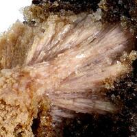 Inesite Hubeite & Fluorapophyllite