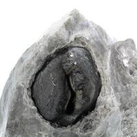 Obsidian Var Apache Tears