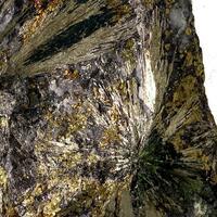 Millerite & Chalcopyrite