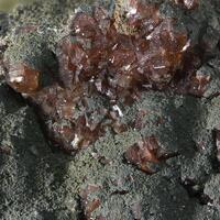 Francolite & Chlorite