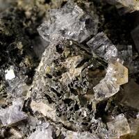 Galena & Fluorite