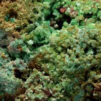 Zeunerite & Torbernite