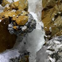 Anglesite Galena & Chalcopyrite