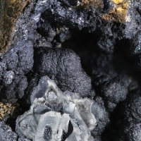 Chalcophanite & Pyrolusite