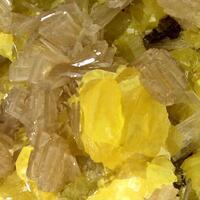 Native Sulphur & Baryte