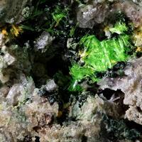 Cuprosklodowskite & Metatyuyamunite