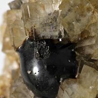 Elaterite & Fluorite