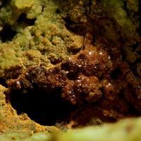 Hidalgoite & Bariopharmacosiderite