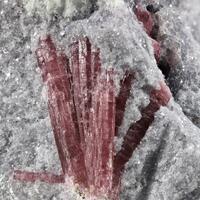 Rubellite In Lepidolite