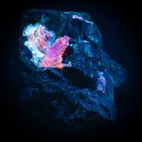 Eudialyte Aegirine & Calcite