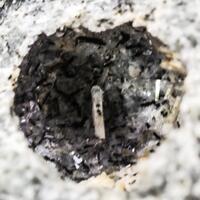 Ferroceladonite On Sazhinite