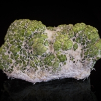 Demantoid & Chrysotile